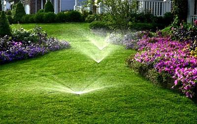 Выбираем систему для полива газона: устройство и применение