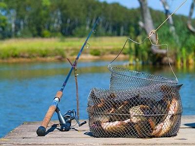 Советы начинающему рыболову: как подготовиться к рыбалке