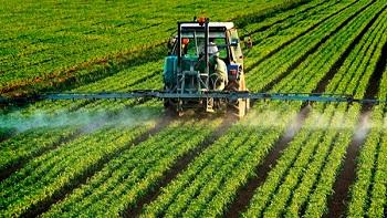 Правила и особенности применения гербицидов для растений