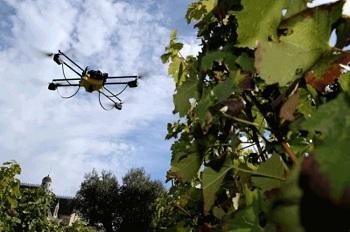Как снять квадрокоптер с дерева: способы, сравнение и этапы