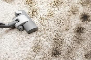 Химчистка ковра в домашних условиях: правила и советы