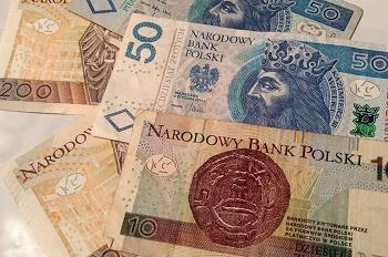 Польский злотый: история, правила покупки и проверка на подлинность