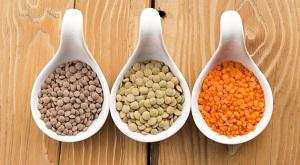 Особенности выращивания чечевицы и правила ухода