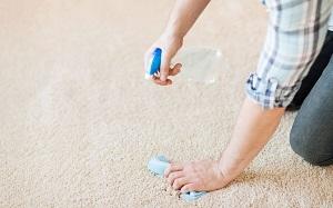 Чистка ковров от жирных пятен: правила и этапы