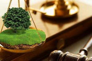 Основные обязанности юристов по земельным спорам