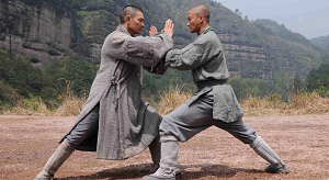 Особенности и правила боевого искусства ушу
