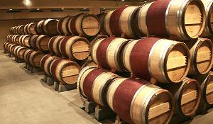 Этапы и правила изготовления дубовых бочек для вина