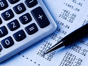 Портал Госуслуги и способы проверки налогов на нем