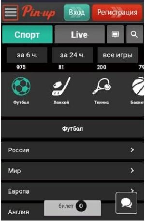 Способы и правила установки приложения Pin Up